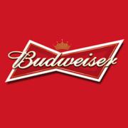 Buswieser logo sqaure 256
